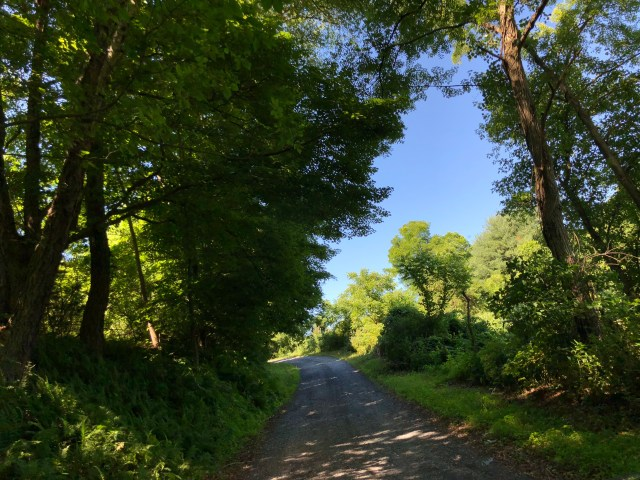 An unpaved portion of The Old Mine Road