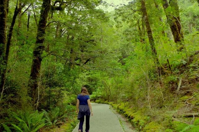 Ariel wanders in New Zealand