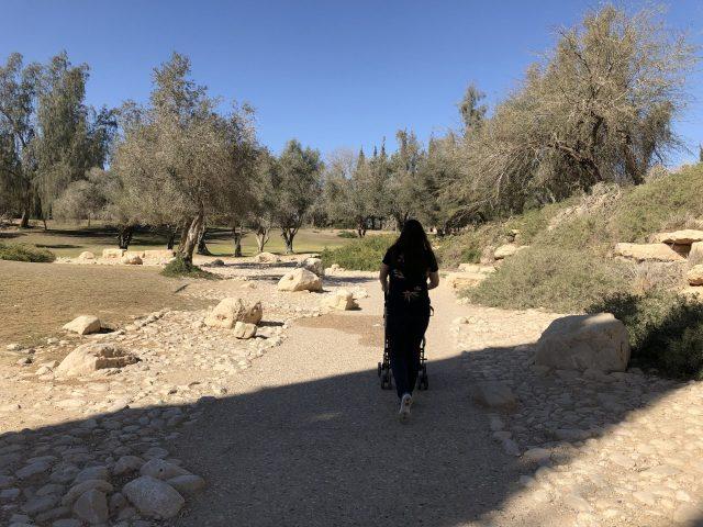 The path at Sde Boker