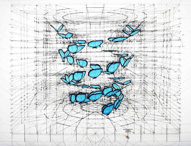 Architect-reveals-the-secret-of-natures-beautiful-designs-in-a-hand-drawn-coloring-book-56fbaed523644__880_670