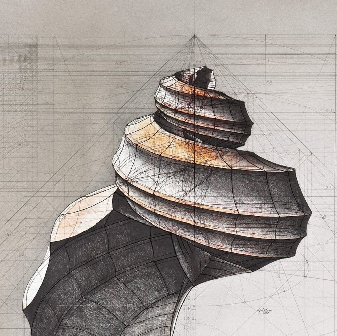 Architect-reveals-the-secret-of-natures-beautiful-designs-in-a-hand-drawn-coloring-book-56fbb5f56733c__880_670