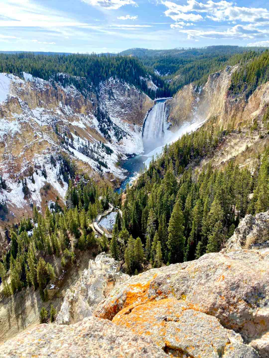 Lower Falls in Yellowstone National Park the Grand Canyon of Yellowstone