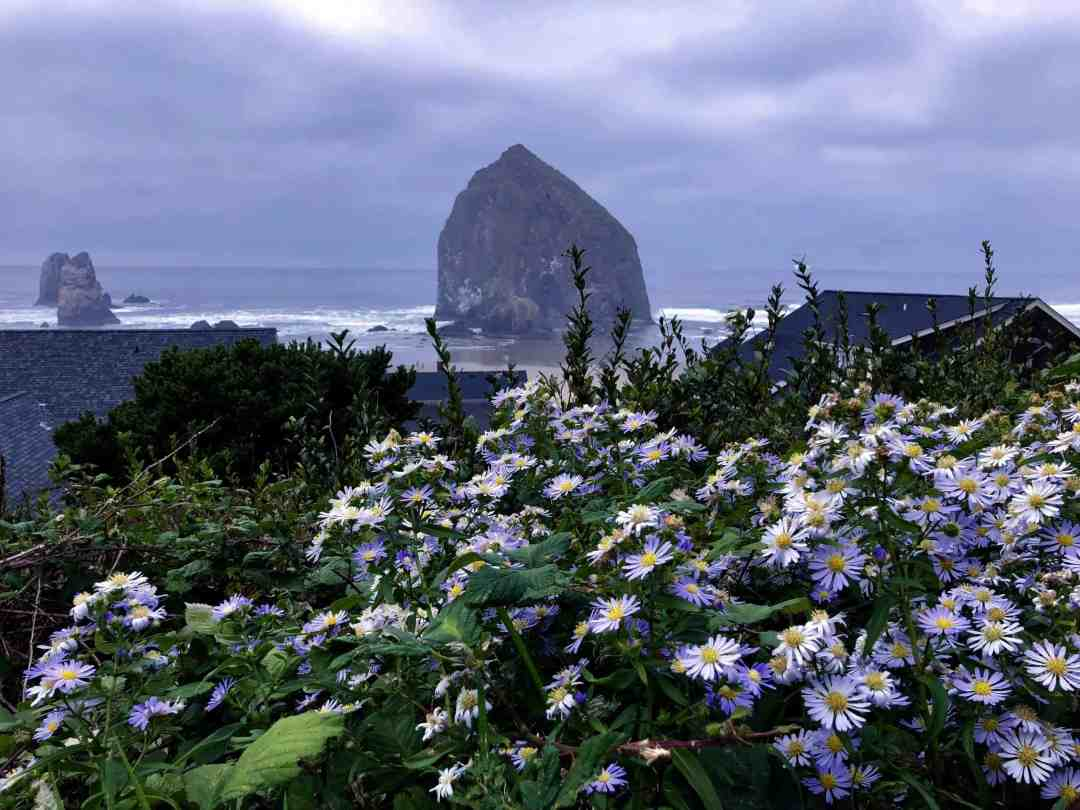 Haystack Rock at Cannon Beach - Best day trips from Portland Oregon