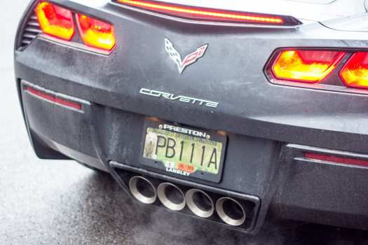 Corvette stingray with green british columbia license plate with a grizzly bear