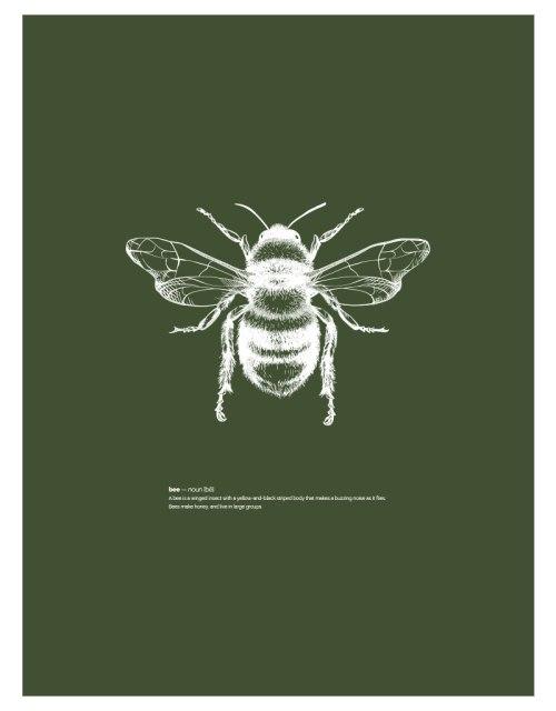 timhenning-bee-I-30x40cm-darkgreen