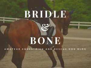 Amateur Equestrian and Rescue Dog Blog
