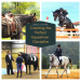 Perfect Equestrian Discipline
