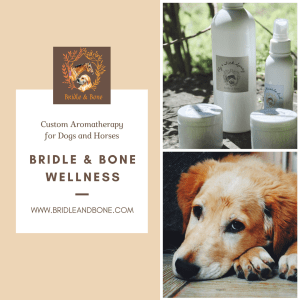 Custom Aromatherapy for Pets