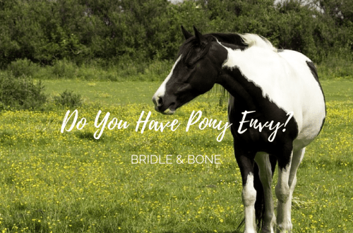 Do You Have Pony Envy?