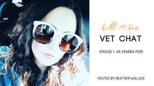 Bridle & Bone Vet Chat