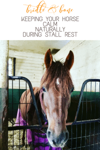 Keep Your Horse Calm Naturally During Stall Rest