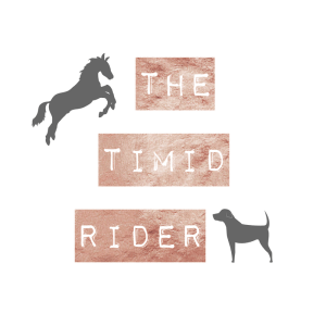 The Timid Rider Graphic
