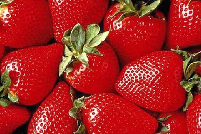 El éxito de las Fresas de Huelva
