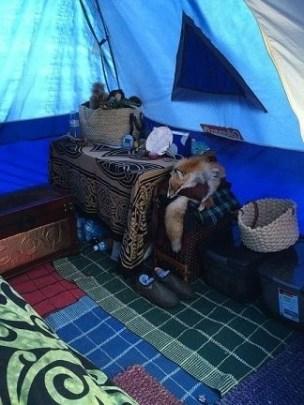 Janet VanMeter's Pennsic dome tent