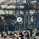 Die großen Irrtümer der Globalisierung, D2019