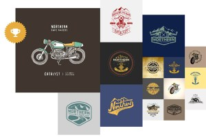 3 logo design options