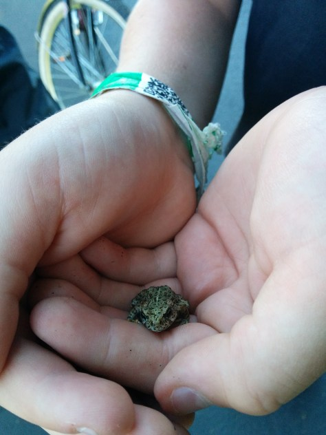 My Cousin Michael (Mikey) Holds a little frog we found on the Bike path in Sunriver.
