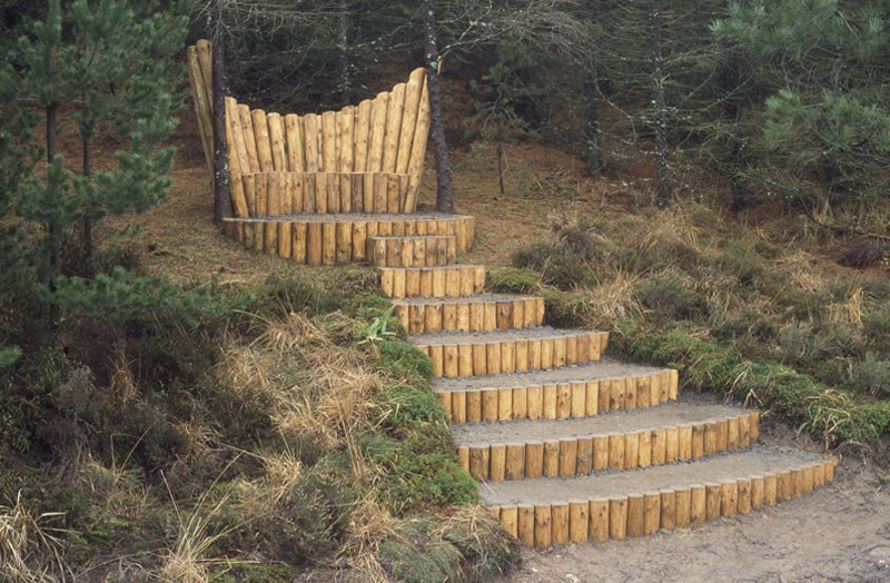 wild-throne-1-by-tim-norris