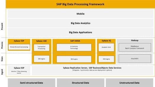 SAP's Big Data Processing Framework