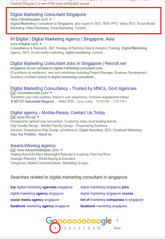 SEO Singapore - Digital Marketing Consultant Singapore