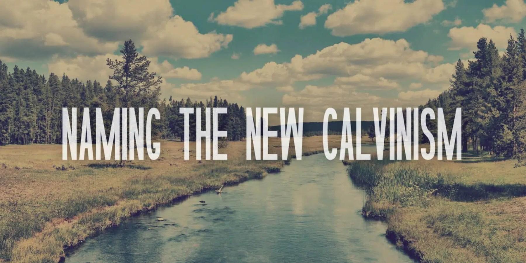 NamingNewCalvinism