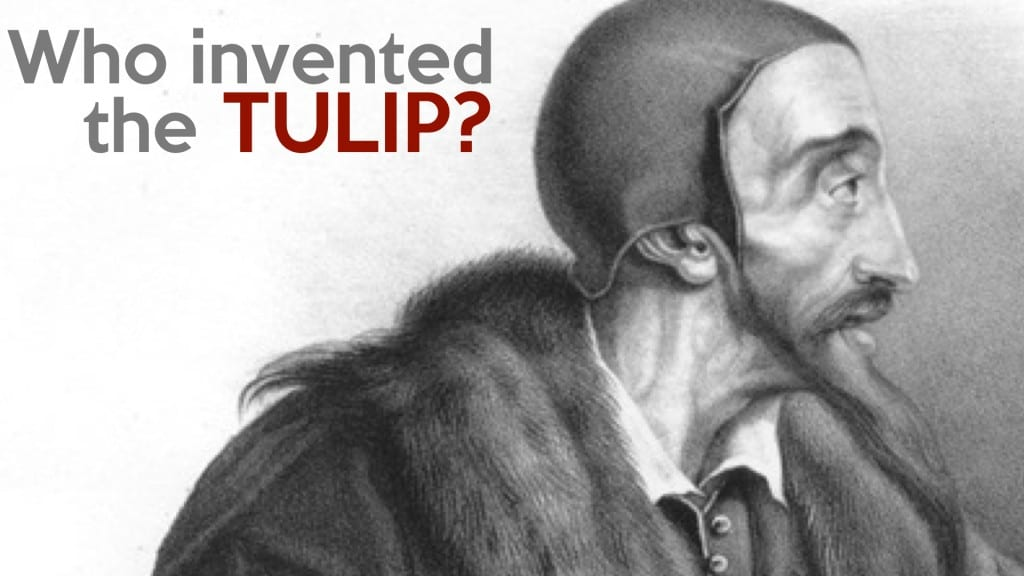 Who_Invented_TULIP