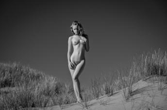 Dune Beauty