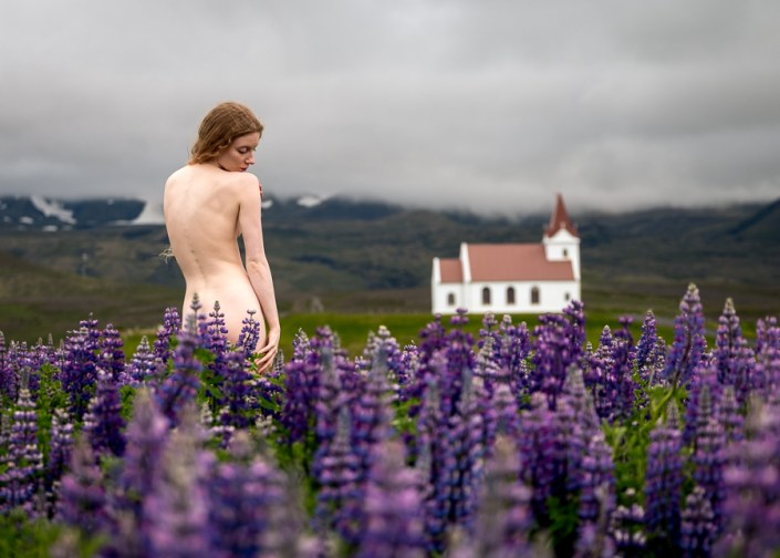 Mountains, Geothermal, Lupins, Lulu – It Must Be Iceland!