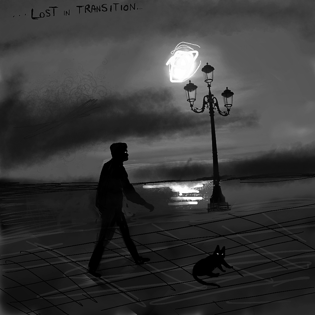 lost-in-transition