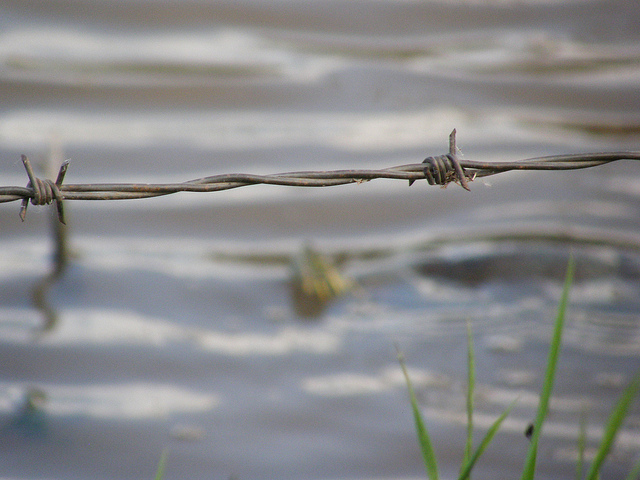 pond with barbed wire