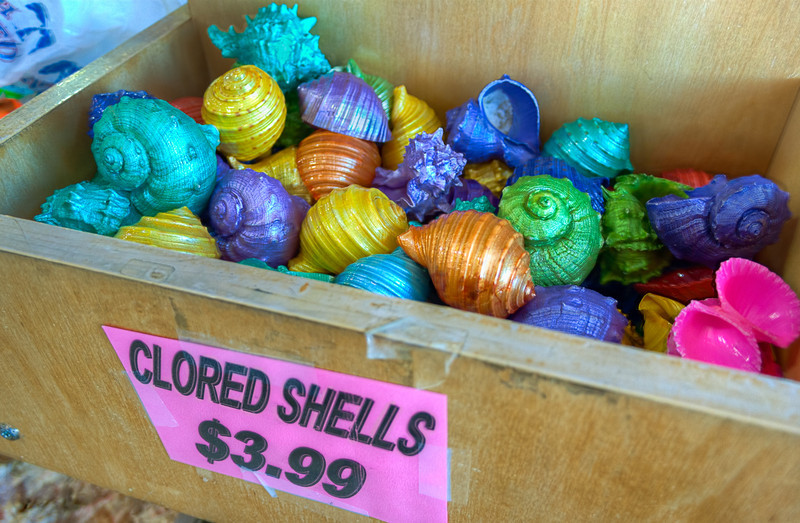 I'm not sure where these clored shells come from, but they add to the local flavor and increase the visual bounty of our seaside shopping adventure.