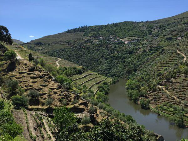 Portugal Wine Tour Report - Wine Tours and Wine Tasting ...