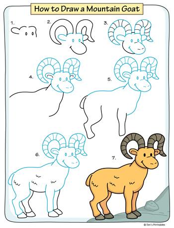 Mountain Goat Drawing Tutorial PDF