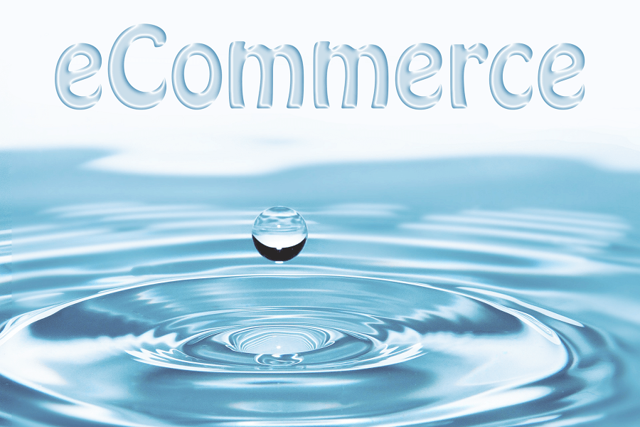 Adaptability and eCommerce – Be Water My Friend
