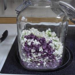 gezupfte Flieder-Blüten