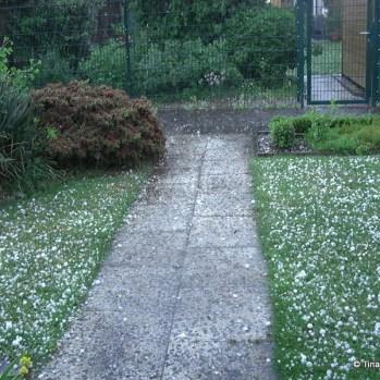Hagelteppich im Vorgarten