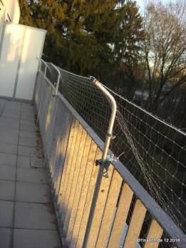 Katzenschutznetz gespannt
