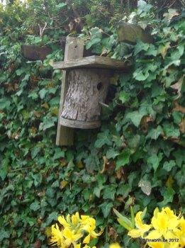 Vogelhaus wird gerne von Wespen bewohnt