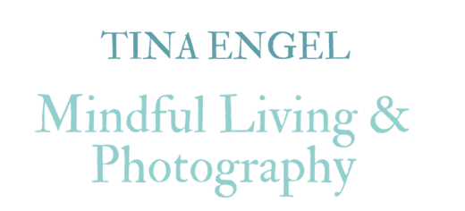 Tina Engel / food and pics