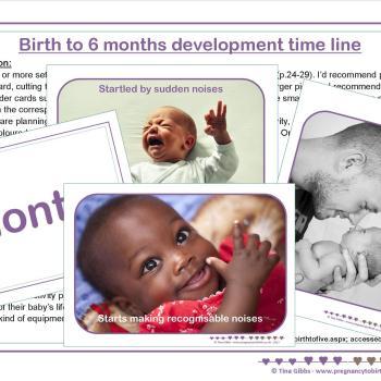 Baby Development Timeline