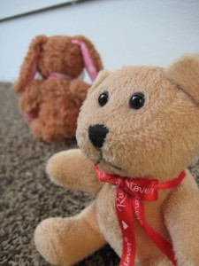 Sad teddy bear estranged from stuffed bunny