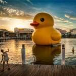 unexpected-art-rubber-duck-fsl