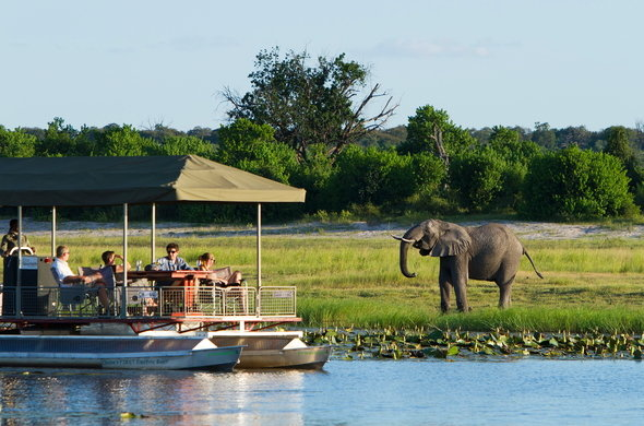 beautiful safaris in Africa