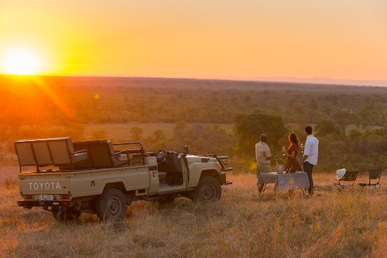 Best safari destinations in Africa 2019