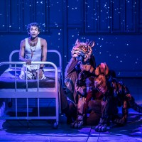 Life of Pi, adapted by Lolita Chakrabarti, scoops Best New Play at the 20th annual Whatsonstage awards and receives two further award nominations