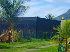 Industry scale Vanilla plantation, Huahine