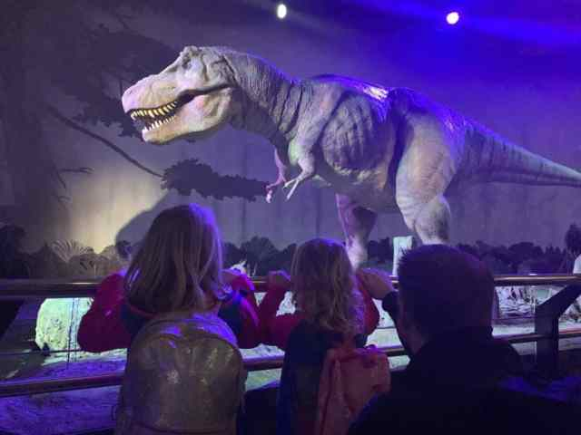 T-Rex in the Natural History Museum in London - things to do in London