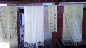 Ecoprint sur soie réussis, à Antsirabe, Madagascar, pas d'erreures cette fois-ci