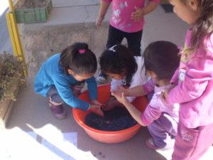 Les enfants teignent le papier