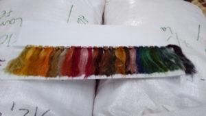 Echantillons de couleurs végétales obtenues sur soie par Aranya Natural - Fondation Indienne